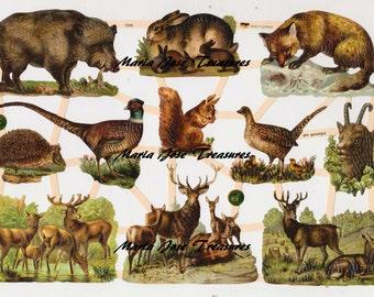 "Vintage Scraps, Cromos ""Forest animals"" - Digital Download"