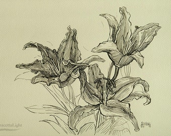 "Flowers - Original Handmade Ink Drawing, Black ink on Paper, Size: 11.7"" x 8.2"" (A4, 29x21cm)"