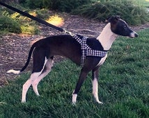Norway harness in the black-white houndstooth. For dog, sighthounds, chihuahua, pugs, bulldogs, Italian greyhound, maltipoo, poodle, whippet