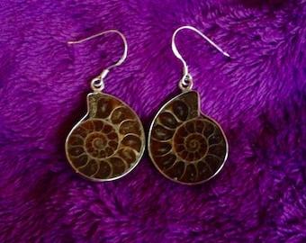 Genuine Ammonite Earrings, sterling silver Ammonite Fossil Earrings, Gemstone Earrings, Ammonite, Ammonite Dangle Earrings, Dangle Ammonite