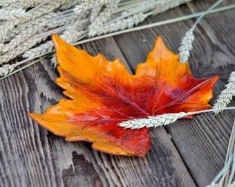 True leaf ceramic, autumn leaves, shell