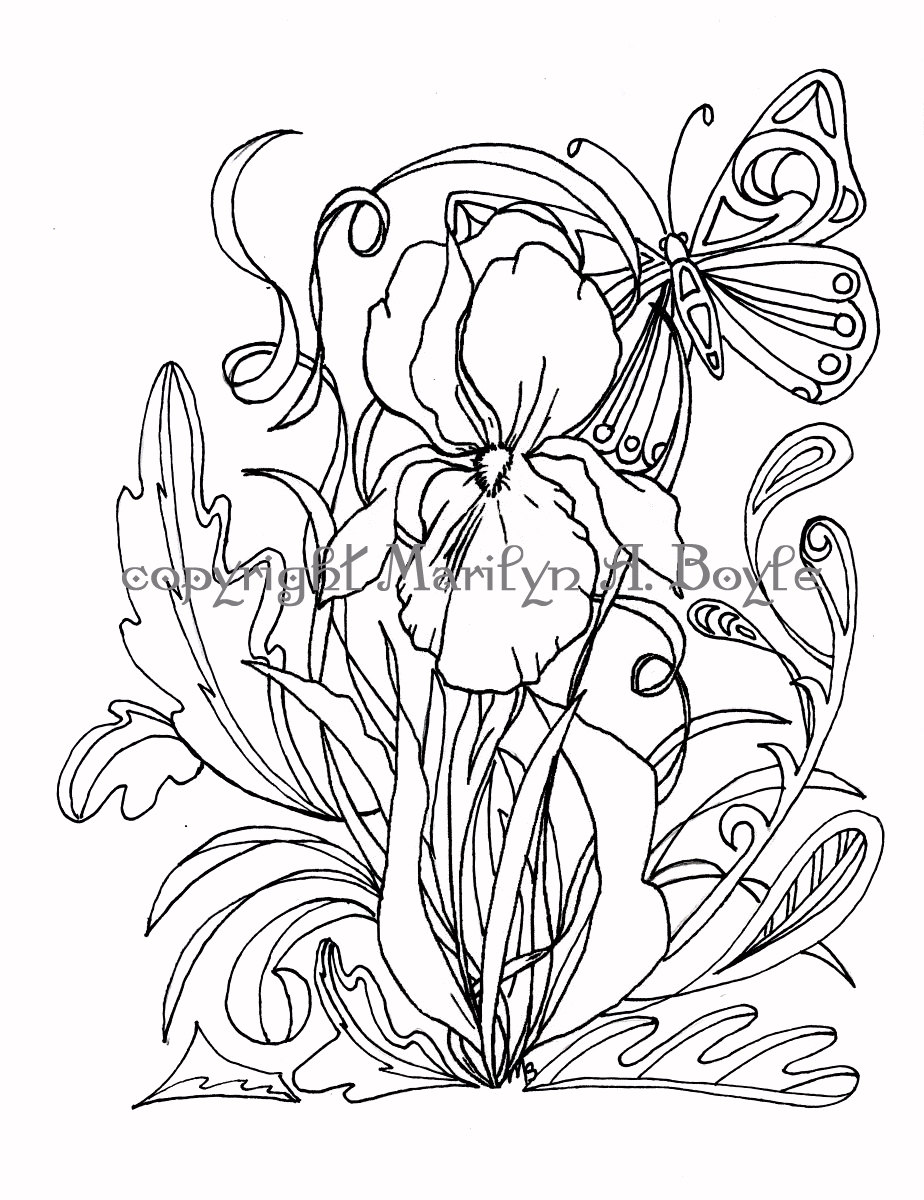 iris coloring pages - photo#21
