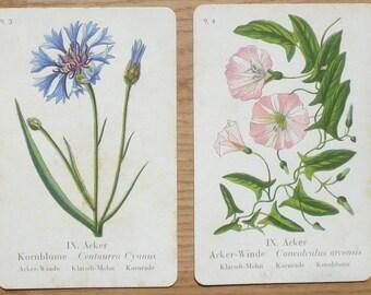 Vintage quartet cards, Flowers, 7.5 x 12 cm, set of 44, craft materials, game parts