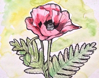 Poppy Watercolor Painting - Red Poppy Watercolor Illustration - Botanical Illustration - Red Poppies - Botanical Painting Poppies