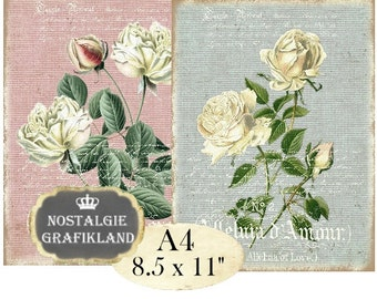 Shabby Chic Roses Victorian Rose Flowers Fleurs French Transfer Iron on Fabric Instant Download digital collage sheet A123