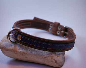 Rouxie leather dog collar, 100% leather, with stitching and a decorative blue leather stripe.