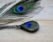 real peacock feather pendant necklace terrarium rustic bohemian gypsy jewelry statement long colorfull necklace unique romanic love jewelry