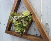 Make your own DIY Succulent Living Wall. Great Gift!