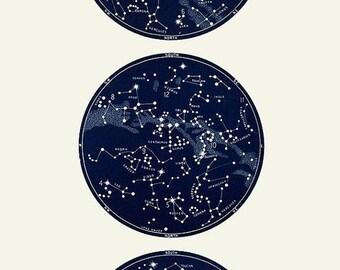 Vertical Constellation Print Trio, Star Chart
