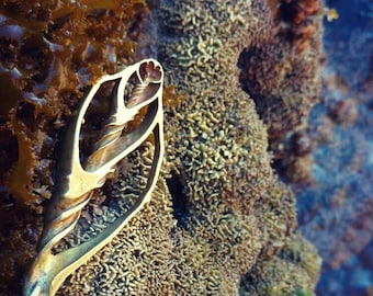Fibronacci ocean flow/ Mermaid Pendant/ Brass Sea treasure