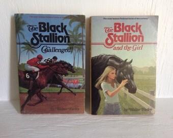 The Black Stallion Series Set of 2