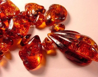 Asian Amber Fragrance Oil Concentrate