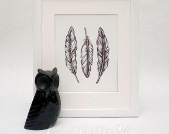 Feathers  |  Art Print