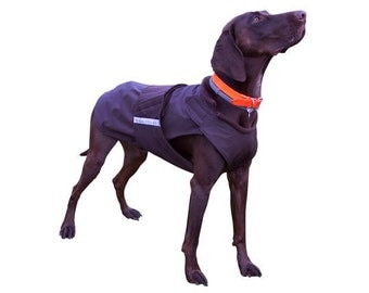 Pointer Winter Dog Coat - Dog Jacket with underbelly protection - Custom made Dog Raincoat - Waterproof / Fleece - Custom made for your dog