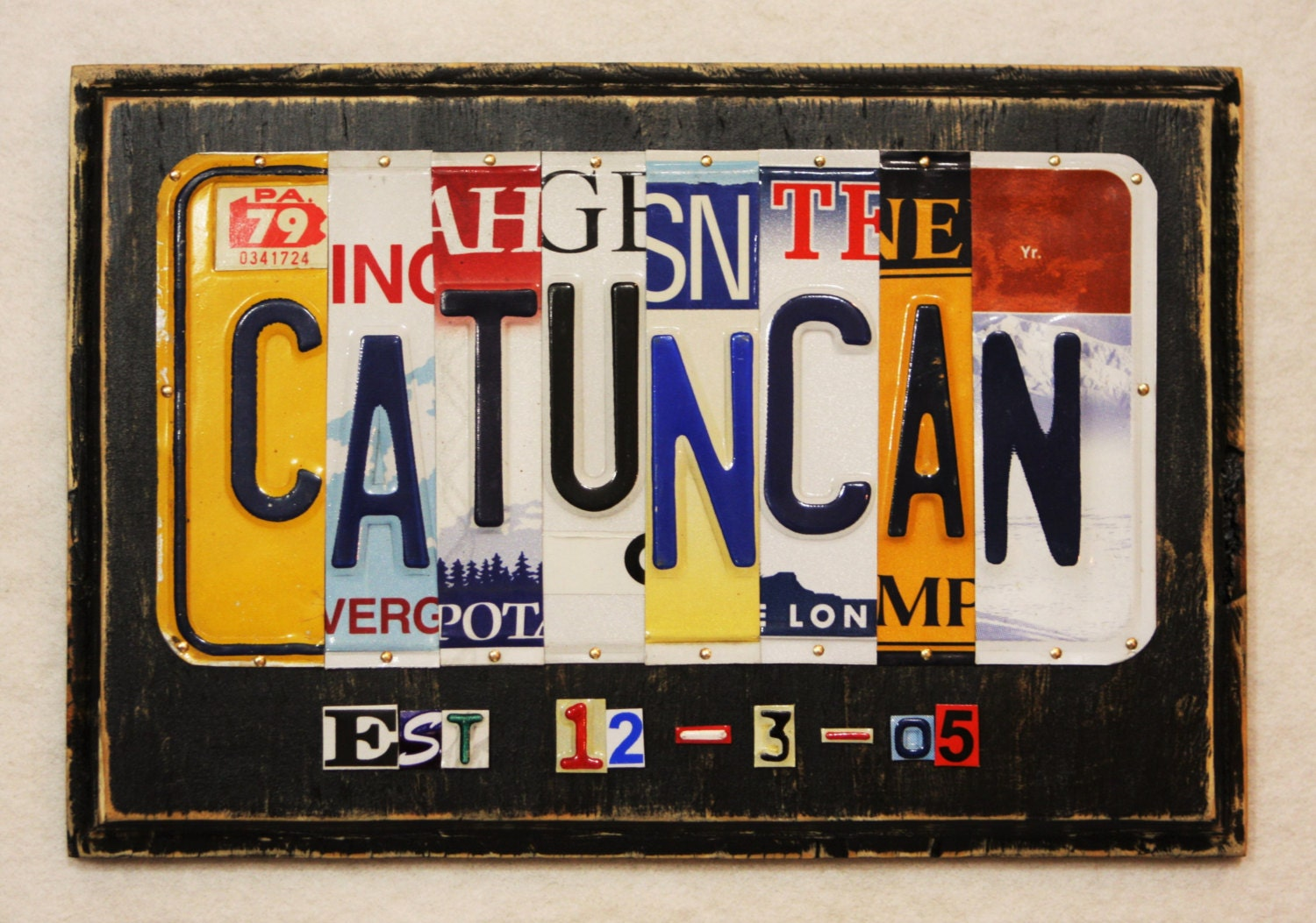 Tin Gifts For 10th Wedding Anniversary: 10th Anniversary Gift GIFT OF TIN License Plate Art Sign