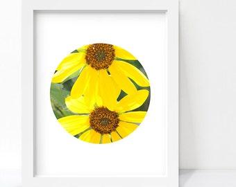 Nature Photography, Yellow Flower Photography, Color Photography, Flower Art, Landscape Photography, Circle Print, Minimalist Poster, 8x10