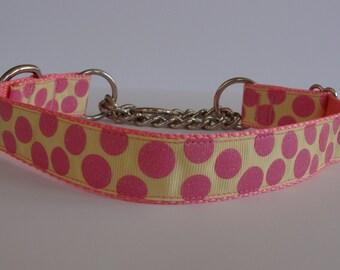 READY TO SHIP! Pink/Yellow Sugar Dots Dog Martingale Collar