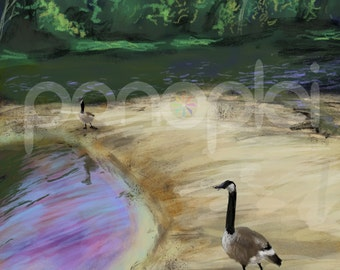 DIGITAL DOWNLOAD - A4 Canadian Goose painting - Canada Geese - Canada Goose - Bird Art - Landscape Painting - J. Travis Duncan - panoplei