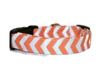 Orange Chevron Dog Collar