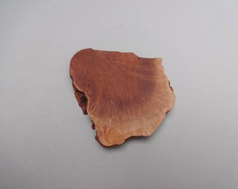 Manzinita - root burl - unique -wooden tree slice 75x74 mm