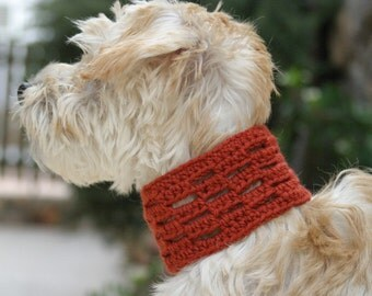Sir Carnegie Crocheted Dog Cowl