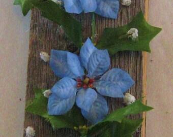 Blue poinsettia on picket
