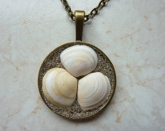 Nautical pendant, seashell pendant, eco friendly sea shell necklace, Irish shell pendant, beach pendant