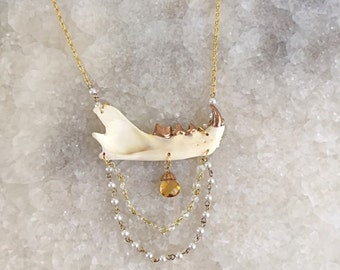 Gold Tooth Jaw Bone Necklace