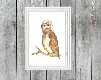 Rustic Owl Art Print, woodland art, bird pictures, nature, outdoors, watercolours