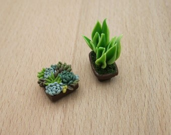 Dollhouse miniature garden Dollhouse decor 1:12 scale flowers pot Succulent Dollhouse plant Flower for doll Tropical Dollhouse decoration