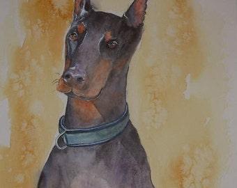 Doberman watercolour painting