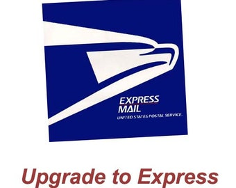 Rush Order Upgrade OR Express Shipping Add On