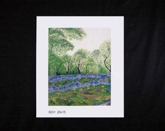 Oak Thicket - Giclee Art Print