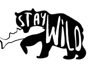 Stay Wild Bear Sticker