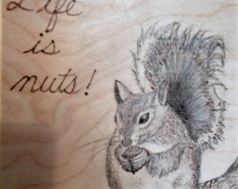 Life is nuts!