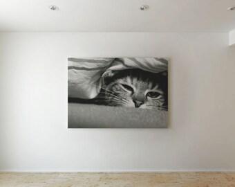 Sad cat - Canvas decor
