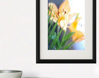 Lily flower photography, floral nature, nature, orange and beige decor.