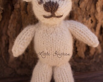 Knitted Bear Stuffie