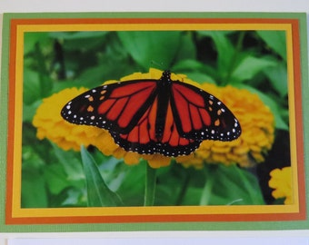Monarch butterfly on yellow zinnia all-occasion greeting card