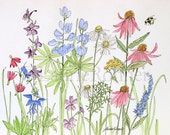 Watercolor Wildflowers Garden Illustration Botanical Art