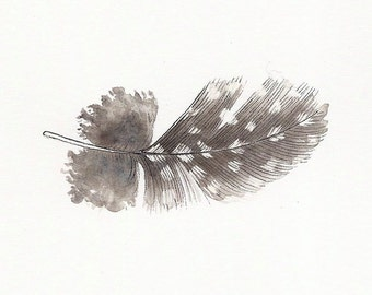 Original ink drawing ~ Guinea fowl feather
