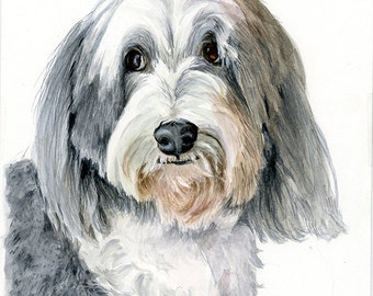 Watercolor Custom Pet Portrait *CONVO FOR AVAILABILITY*  Bearded Collie Portrait, Collie Portrait, Dog Portrait, Animal Lovers Gift