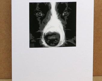 Collie Greeting Card Art Print