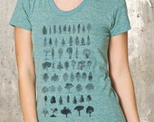 Diagram of Trees - Women's Tri-Blend T-Shirt - Women's Small Through XL Available