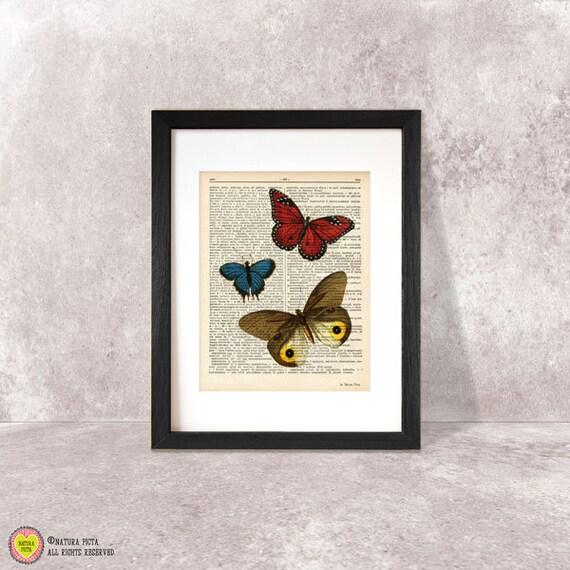 Stampa grafica farfalle stampe ecosostenibili arredo for Stampe arredo