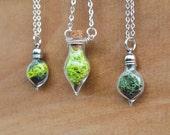 Moss Necklace, Plant Necklace, Glass Terrarium Necklace, Miniature Terrarium, Botanical Jewelry, Moss Jewelry, Plant Jewelry, Live Plant