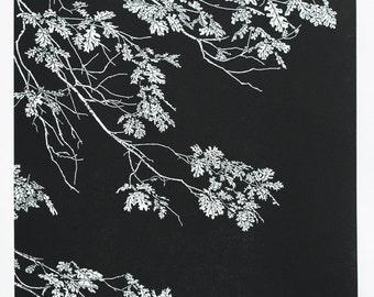 Black Oak - Yosemite, Quercus kelloggii tree leaves Fine Art Linocut Print 24 x 18 Black & White, Relief Print, Anniversary Series, NPS