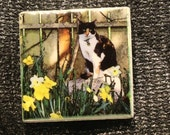 "Magnet  Cat in Garden 'Ginger' 1.75"" x 1.75"""