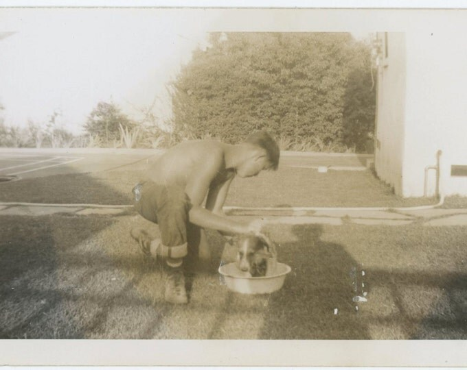Vintage Snapshot Photo: Puppy Gets a Bath, c1940s (68496)