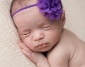 FREE SHIPPING! Purple Baby Headband, Purple Headband, Chiffon Headbands, Baby Headbands, Newborn Headbands, Photography Prop